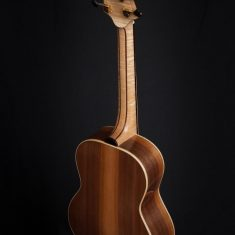 Terz-Guitar-Arnaldo-Lopez-back-walnut