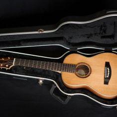 Terz-Guitar-Arnaldo-Lopez
