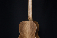 Terzgitaar-back-007-walnut