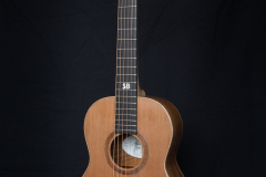 Terzgitaar-front-cedar-top