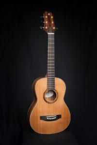 Terz gitaar